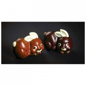 Moule 1 petit lapin en polycarbonate pour chocolat