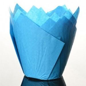 Caissettes Tulipcup Culpitt Blue 50 pièces