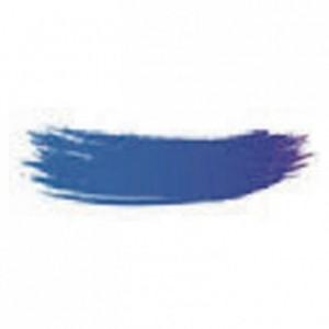 Colorant poudre alimentaire bleu 25 g