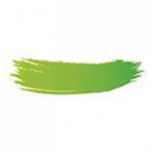 Colorant poudre alimentaire vert brillant 25 g