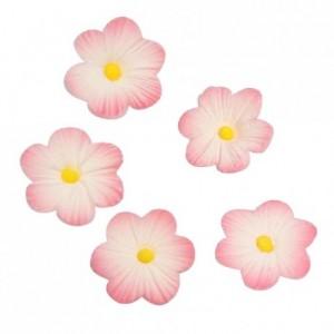 Décoration en sucre Culpitt marguerites roses 12 pièces