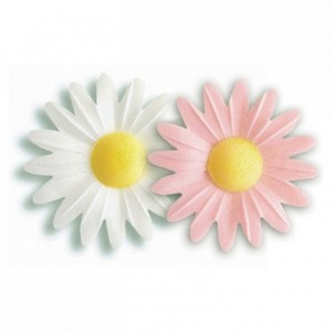 Décor azyme marguerite pastel (lot de 100)