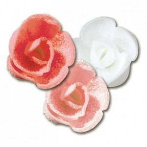 Décor en sucre rose cristallisée (lot de 60)