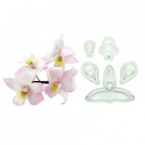 Découpoirs JEM orchidées de Singapour 5 pièces