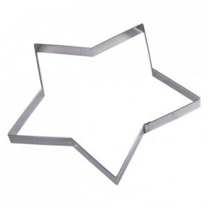 Etoile inox H15 210x200 mm