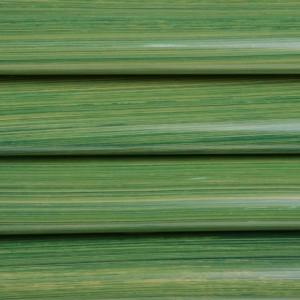 Feuilles transfert brosse vert par 12