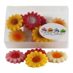 Marguerites en pâte d'amandes FunCakes jaune, rouge, rose et blanc 12 pièces