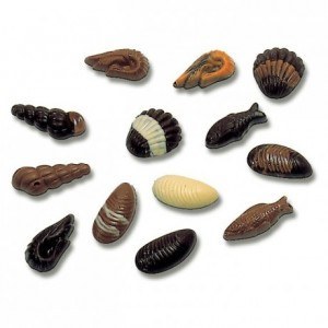 Chocolate mould polycarbonate 20 assorted seafood