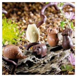 Chocolate mould forest animals 5 shapes