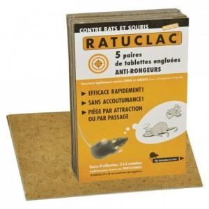 Piège contre les souris et les rats Ratulac (lot de 10)