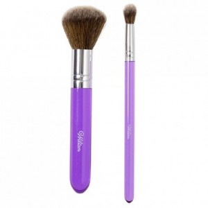 Wilton Dusting Brush Set/2