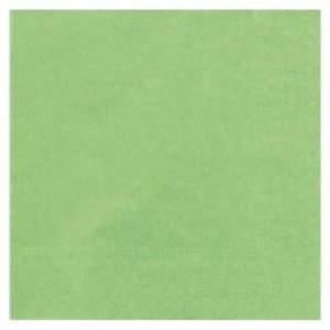 Serviette ouate pistache 39 x 39 cm (lot de 100)