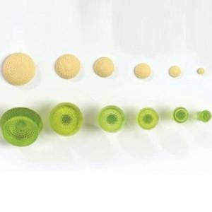 Tampons JEM boutons de fleurs 6 pièces
