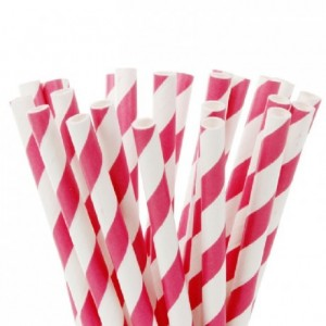 House of Marie Cake Pops Straws Stripes Fuchsia Rink pk/20