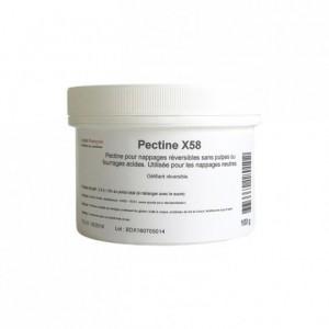 Pectine X58 100 g