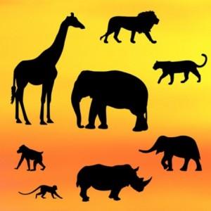 Découpoirs Patchwork silhouette safari