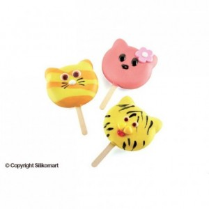 Cat popsicles mould