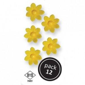 PME Yellow Daisies pk/12