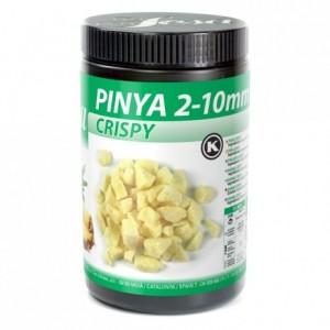 Ananas crispy lyophilisée Sosa 200 g
