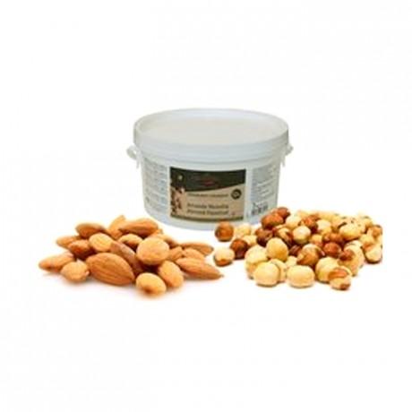 Almond Hazelnut Fruity and Crunchy Praliné 50% nuts 2 kg
