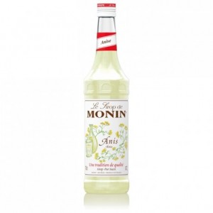 Anise Monin syrup 70 cL