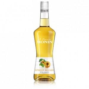 Liqueur abricot 20% Monin 70 cL