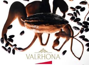Tous les produits Valrhona à petits prix
